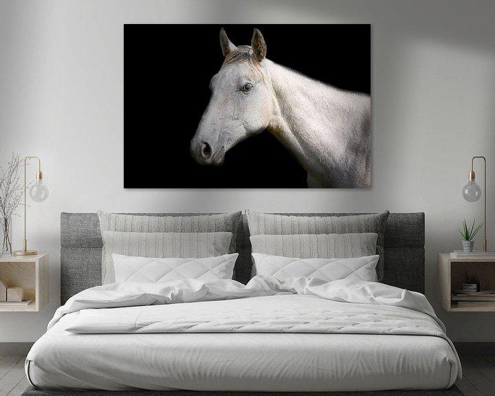 Impression: Weißes Pferd auf schwarzem Hintergrund sur Jan Brons