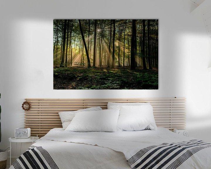 Sfeerimpressie: Zonnestralen in bos van Arthur Wolff