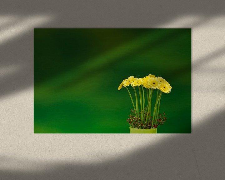 Sfeerimpressie: Gerbera  'Yellow' van Greetje van Son