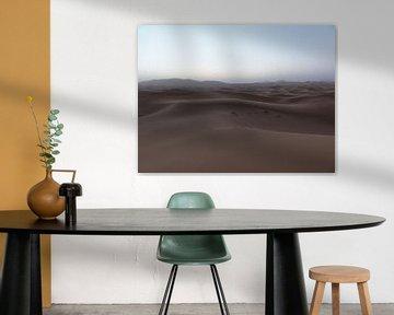 Woestijn von Iris Ritzen
