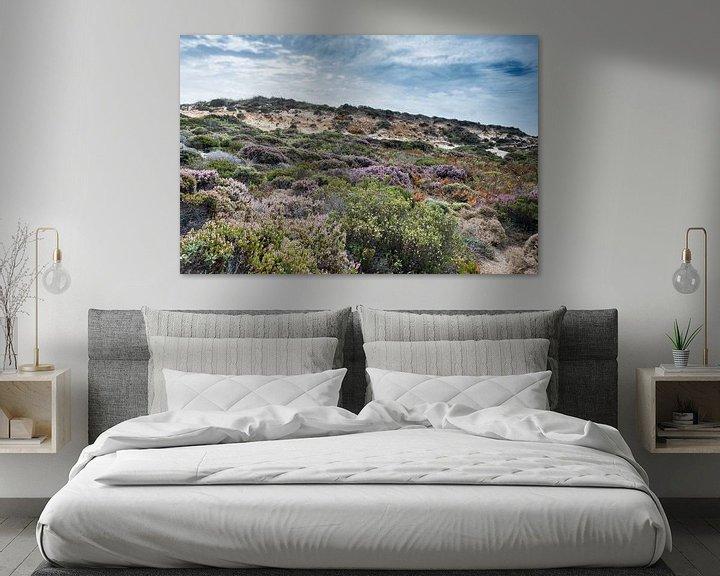 Sfeerimpressie: dune plants as erica and beautiful sky van Compuinfoto .