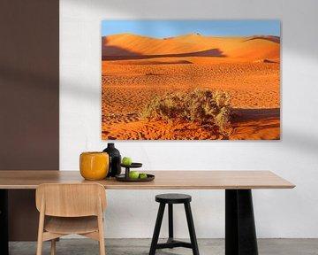 Orangene Wüste