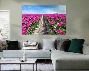 Pfad in Tulpen Feld mit lila Blüten und blauer Himmel von Ben Schonewille