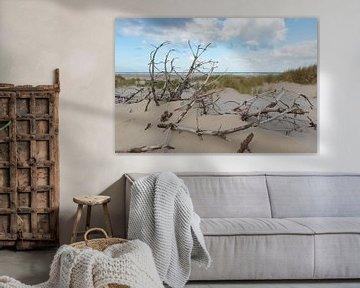 Dode takken in de duinen von Tonko Oosterink