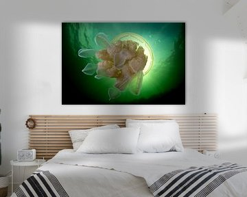 Zeepaddenstoel van Filip Staes