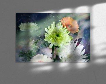 Herbstblumen / Astras von Marianna Pobedimova