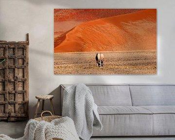 Oryx gemsbok Namibwoestijn