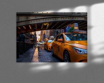 Grand Central Terminal, New York van Thomas Bartelds