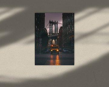 Classic New York City van Thomas Bartelds