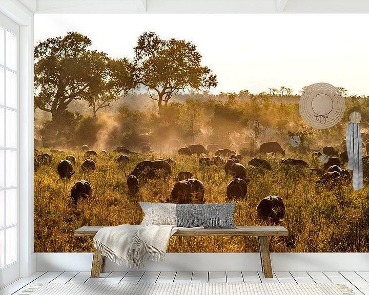Sfeerimpressie behang: Kaapse buffels van Rob Smit