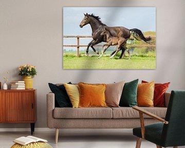 Galopperend paard samen met haar veulen van Yvette Baur