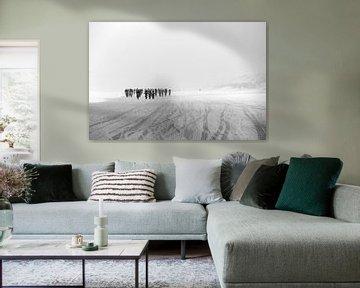 Zandhappers von Leon van Bon