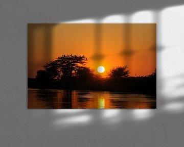 Okavango river bij zonsondergang van Felix Sedney