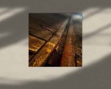 Vervlogen rails von Chris van Doorn