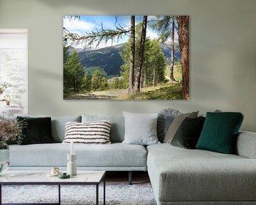 doorkijk van Italiaans Bos en Berg landschap  van Paul Franke