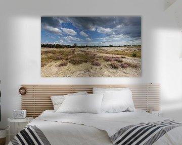 Heideveld met wolkenlucht van Martin Stevens