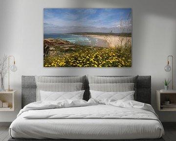 Zeezicht portugal over mooi geel bloemen bed