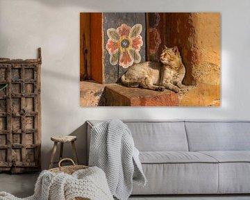 Tempel-Katze mit Wand-Blume