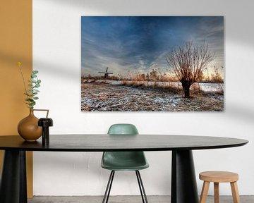 Winter van Christian Vermeer