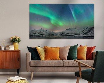 Noorderlicht of poollicht boven de Lofoten in Noorwegen van Sjoerd van der Wal