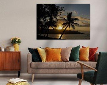 Zonsondergang op een tropisch eiland, Australie van Marcel van den Bos