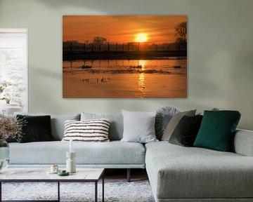 Bevroren Diest - landschap van Maarten Honinx