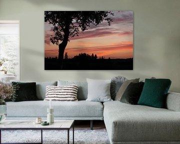 Kleurrijke lucht van Monique Struijs