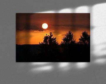 ondergaande zon van Monique Struijs