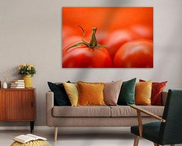 Tomaat van Marco van den Arend