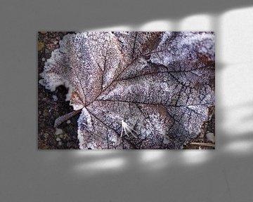 Herfst blad van Willy Sybesma