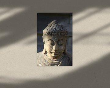 Bouddha sur Cora Unk