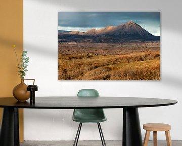 Vulkaan te IJsland van Ben van Boom