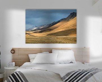 Die Wüste von Ben van Boom