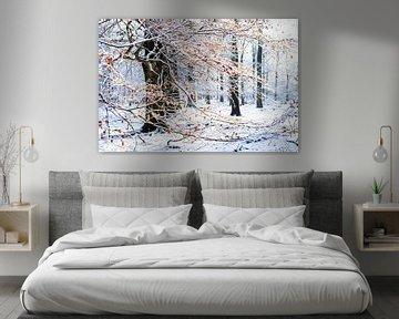 Winter in het bos sur Portrait of Holland