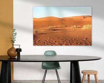Bruin landschap, Namibië