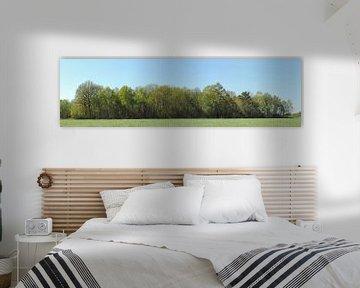 panorama van een bosrand van Wim vd Neut