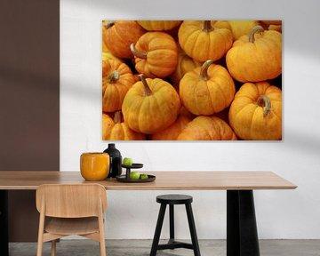 Pumpkin von Annasus Nenolas