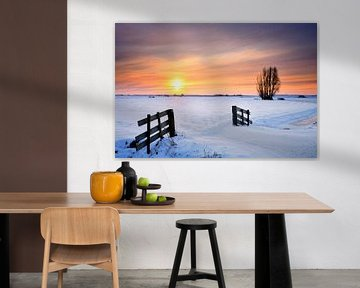 Winterlandschap in de IJsseldelta van Sjoerd van der Wal