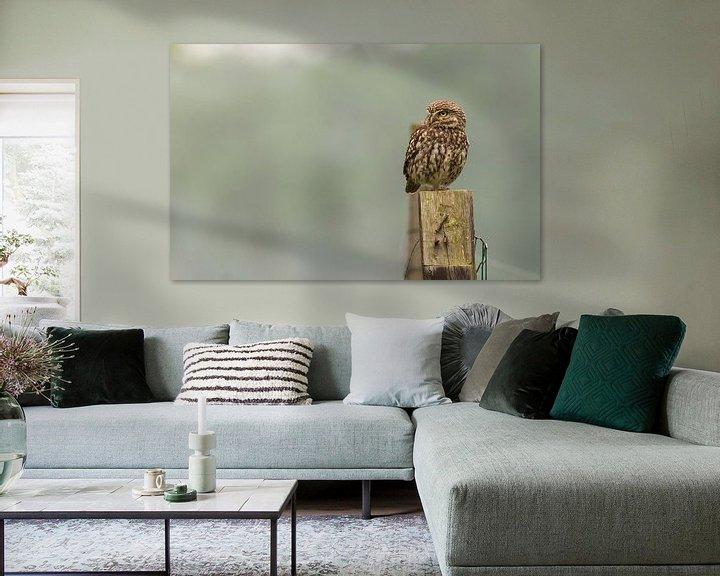 Sfeerimpressie: Steenuiltje  van Rando Kromkamp