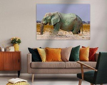 Seltsamer Elefant
