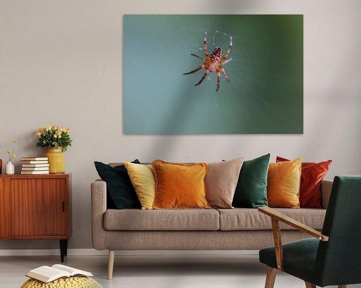 Impression: Toile d'araignée dans la toile sur Paul Franke