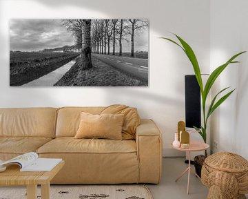 Monochrome landschap / B & W Landscape van Henk de Boer