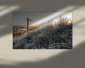 Winter duinlandschap op Texel / Winter landscape of dunes on Texel van Justin Sinner Pictures ( Fotograaf op Texel)