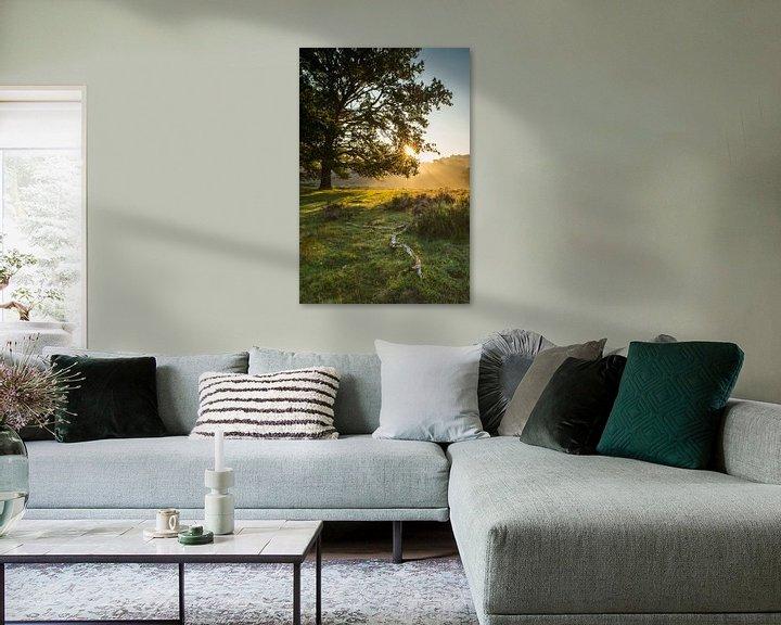 Sfeerimpressie: De zon laat zich door de bladeren zien. van Albert Lamme