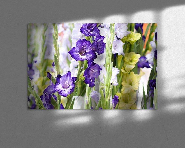 Sfeerimpressie: paarse witte en groene Gladiolen van Patricia Verbruggen