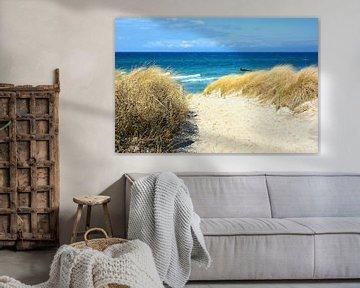 Weg über die Dünen zum Meer von Gisela Scheffbuch