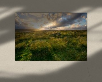 The Isle, where always the wind blows van Ferry veldhuizen