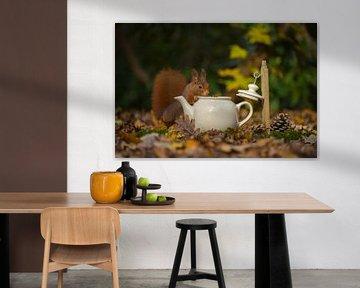 Eekhoorn komt op de thee. van Francis Dost