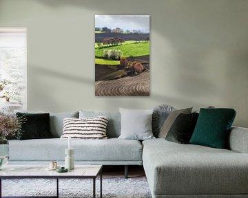 Heuvelland van peter reinders