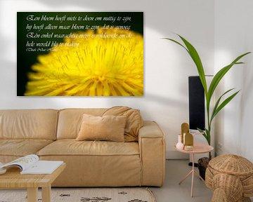 Een bloem hoeft niets te doen om nuttig te zijn van Cora Unk